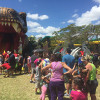 Dinosaurs lift zoo to visitor record