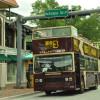 Coconut Grove tourism rebounds