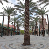 Coral Gables office market roaring into 2018