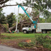 Not a cent of federal aid for Hurricane Irma damage reaches county