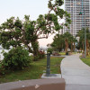New projects adorn Biscayne Bay at Edgewater