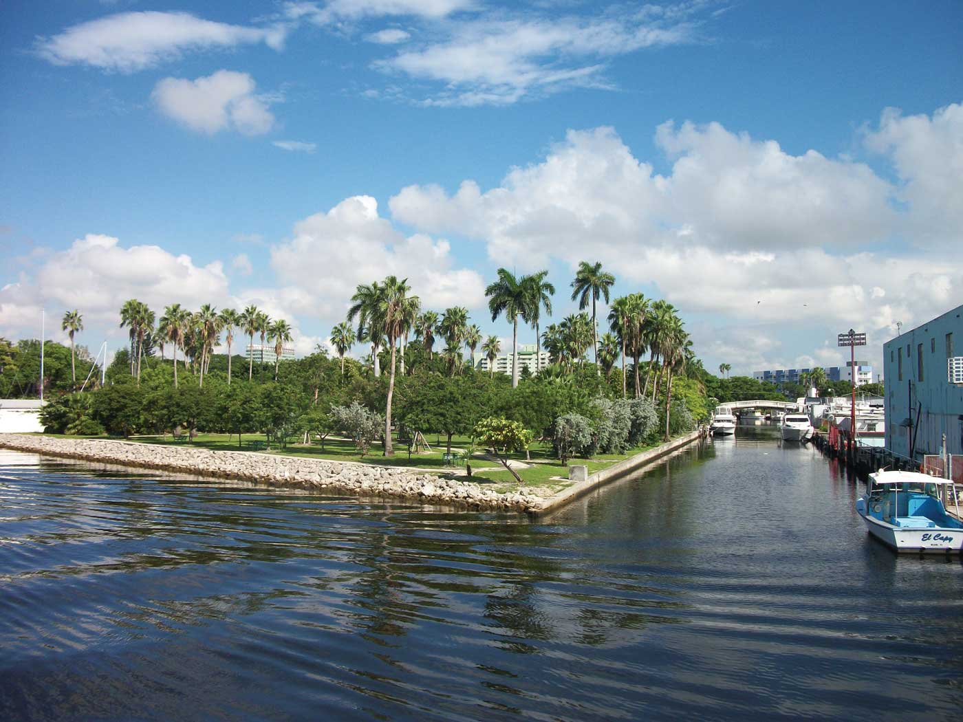 Clean-up of Miami River tributaries in home stretch