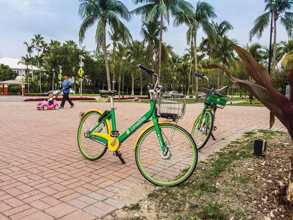 Coral Gables bars bike and scooter leasing, takes a spin with Spin