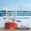 Massive cranes on high seas