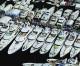 As boat show closes, super-yacht marina nears opening
