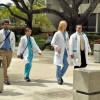 Job market for nurses full of new opportunities