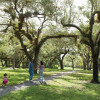 Girl Scouts selling land to add to Matheson Hammock