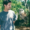 Museum raptor center winging to North Miami Beach