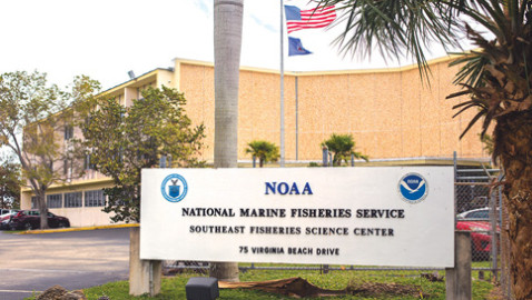 Southeast Fisheries Science Center to be on the move