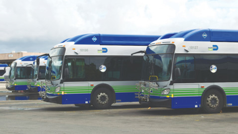Transit Alliance Miami targets improved bus system