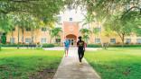 St. Thomas University builds on internships