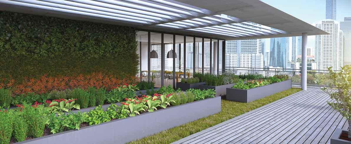Rooftop Veggie Garden Next Condo Amenity Miami Today