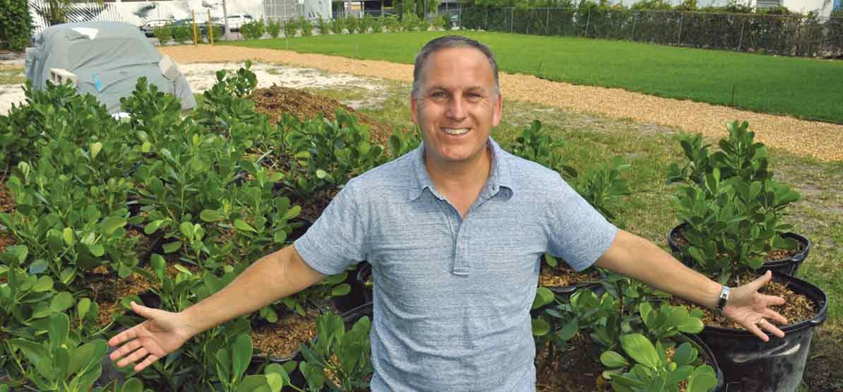 Wynwood realty pioneer lets green grow