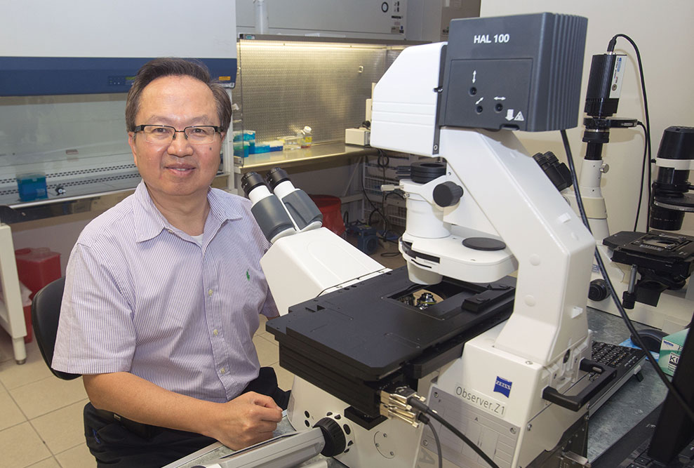 Scheffer Tseng: MD develops and markets wound-healing technologies