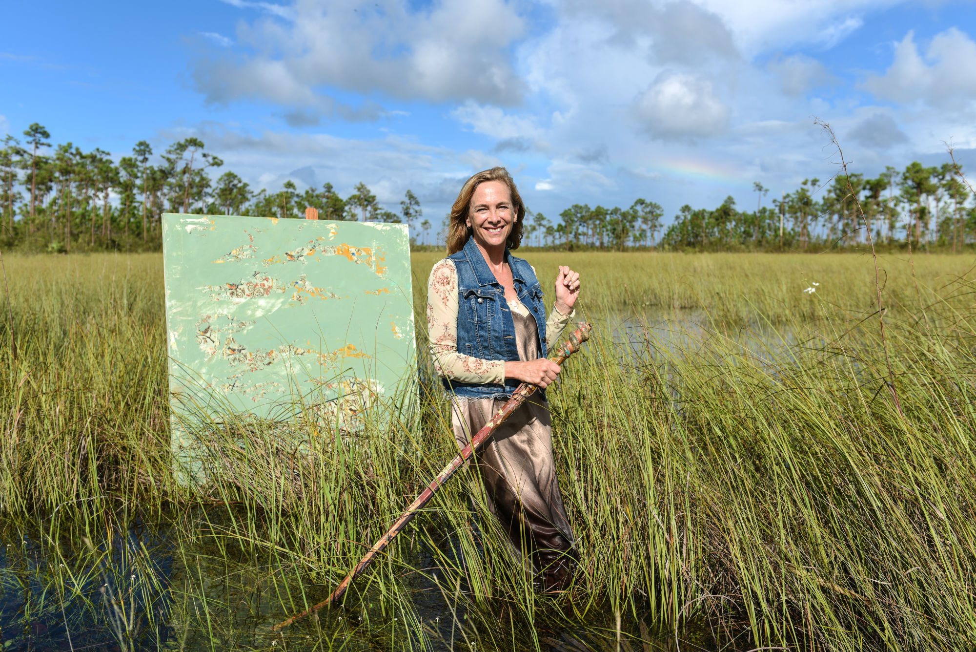 Everglades Field Guide from Reality to Memory