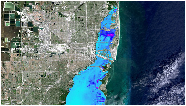 Palm Beach County becomes poster child for Biscayne Bay's health