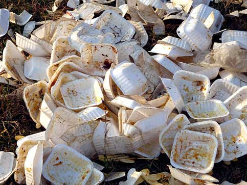Coral Gables to fight for right to ban Styrofoam