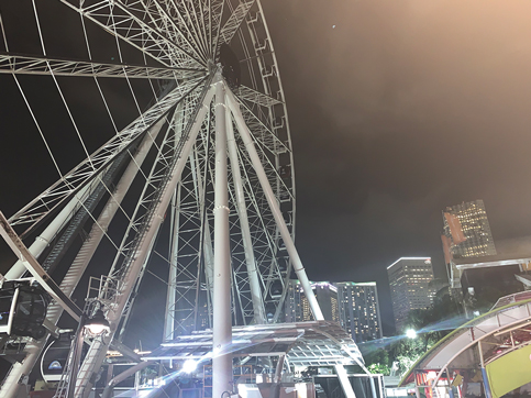 You might take observation wheel for a spin this month
